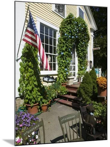 Vineyard Chairs, North Tisbury, Martha's Vineyard, Massachusetts, USA-Walter Bibikow-Mounted Photographic Print