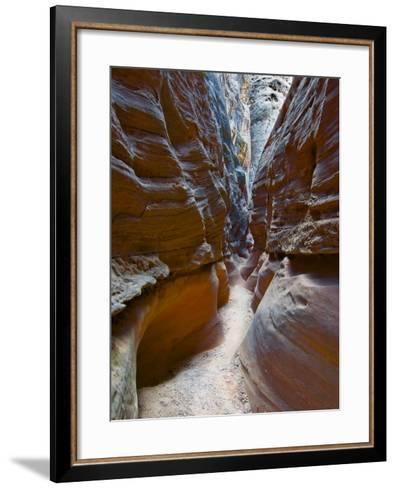 Sculptured sandstone formations in Little Wild Horse Canyon, San Rafael Swell, Utah, USA-Charles Crust-Framed Art Print
