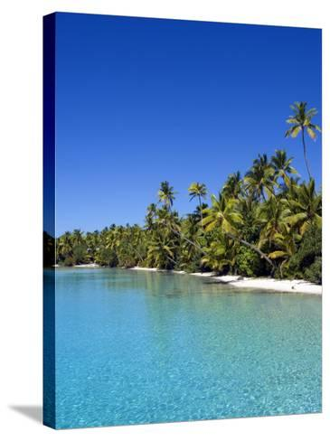 Palm Lined Beach, Cook Islands-Michael DeFreitas-Stretched Canvas Print