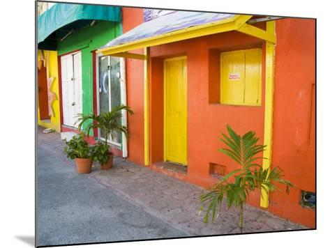 Colorful Street Front, Isla Mujeres, Quintana Roo, Mexico-Julie Eggers-Mounted Photographic Print