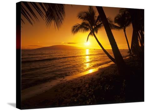 Colorful Sunset in a Tropical Paradise, Maui Hawaii, USA-Jerry Ginsberg-Stretched Canvas Print