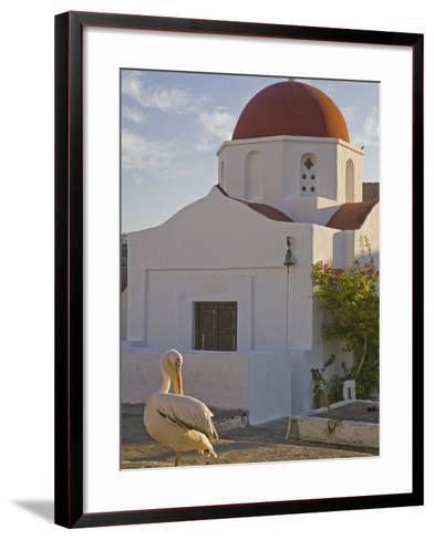 White Pelican Preening, Hora, Mykonos, Greece-Darrell Gulin-Framed Art Print