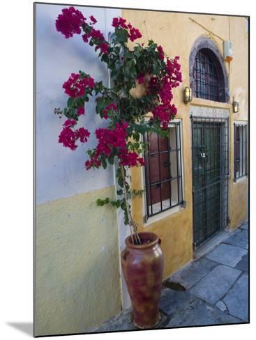 Bougenvillia Vine in Pot, Oia, Santorini, Greece-Darrell Gulin-Mounted Photographic Print