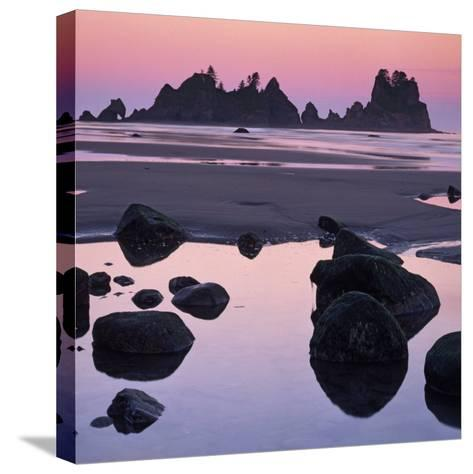 Shi Shi Beach, Olympic National Park, Washington, USA-Charles Gurche-Stretched Canvas Print