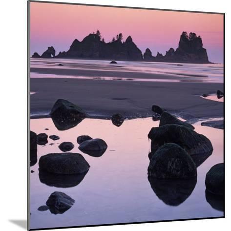 Shi Shi Beach, Olympic National Park, Washington, USA-Charles Gurche-Mounted Photographic Print