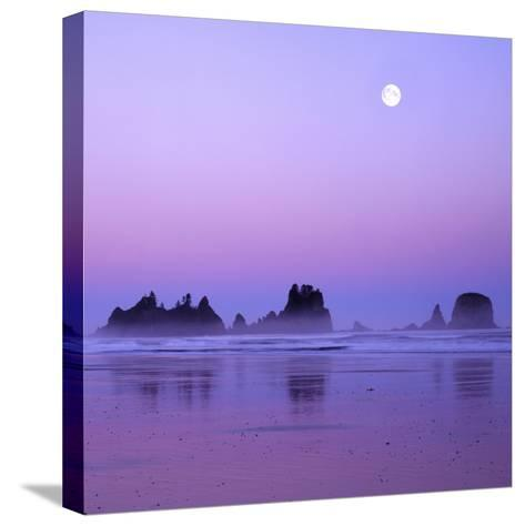 Full moon above seastacks, Olympic National Park, Washington, USA-Charles Gurche-Stretched Canvas Print