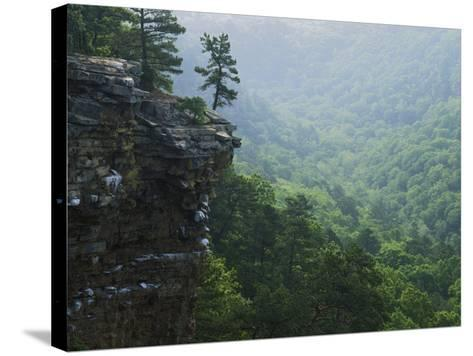 Bluff at Cedar Creek, Petit Jean State Park, Arkansas, USA-Charles Gurche-Stretched Canvas Print