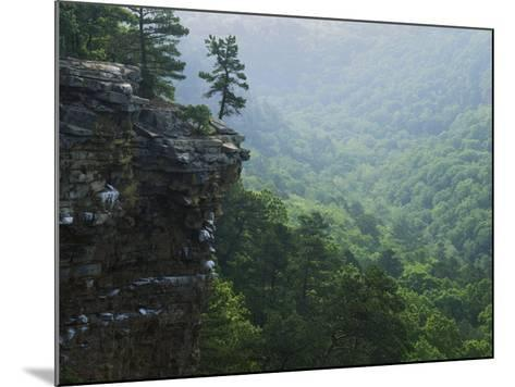 Bluff at Cedar Creek, Petit Jean State Park, Arkansas, USA-Charles Gurche-Mounted Photographic Print