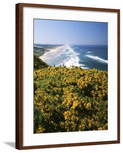 Lane County, Pacific Coast, Oregon, USA-Charles Gurche-Framed Art Print