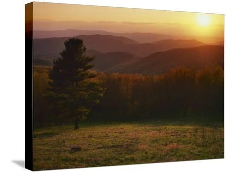 Sunset from Hazeltop Ridge, Shenandoah National Park, Virginia, USA-Charles Gurche-Stretched Canvas Print
