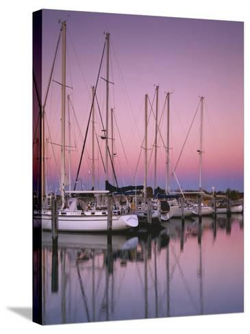 Sailboats at Dusk, Chesapeake Bay, Virginia, USA-Charles Gurche-Stretched Canvas Print