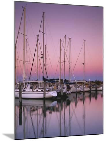 Sailboats at Dusk, Chesapeake Bay, Virginia, USA-Charles Gurche-Mounted Photographic Print