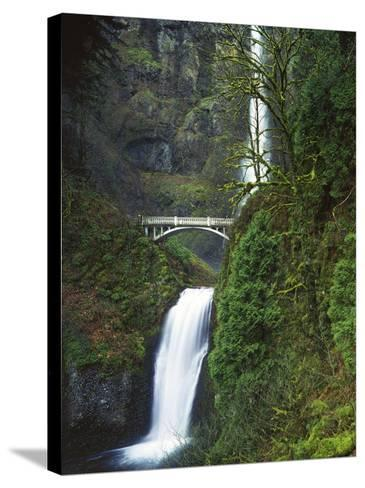 Multnomah Falls, Columbia Gorge National Scenic Area, Oregon, USA-Charles Gurche-Stretched Canvas Print