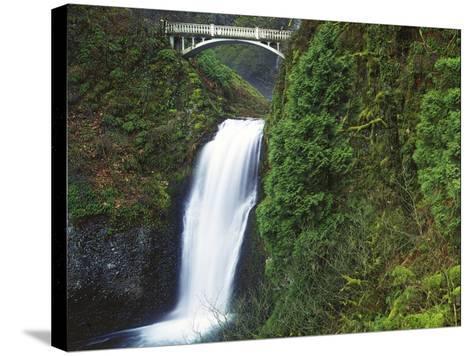 Multnomah Falls, Columbia Gorge National Scenic Area, Oregon, USA-Charles Gurche-Stretched Canvas Print