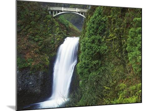 Multnomah Falls, Columbia Gorge National Scenic Area, Oregon, USA-Charles Gurche-Mounted Photographic Print
