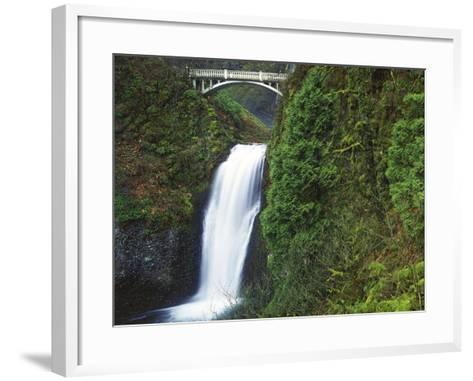 Multnomah Falls, Columbia Gorge National Scenic Area, Oregon, USA-Charles Gurche-Framed Art Print