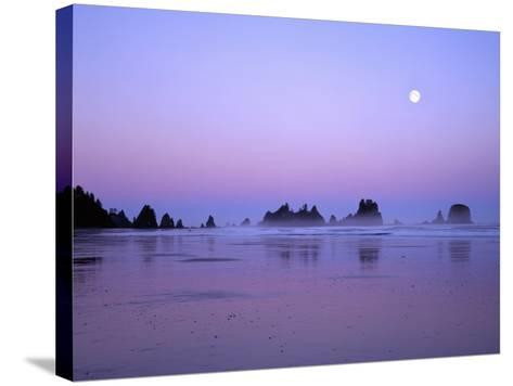 Full moon above seastacks, Olympic National Park, Washington, USA-Charles Gurche-Stretched Canvas Print