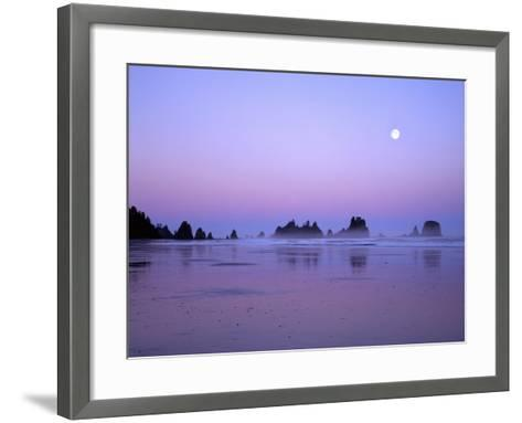 Full moon above seastacks, Olympic National Park, Washington, USA-Charles Gurche-Framed Art Print