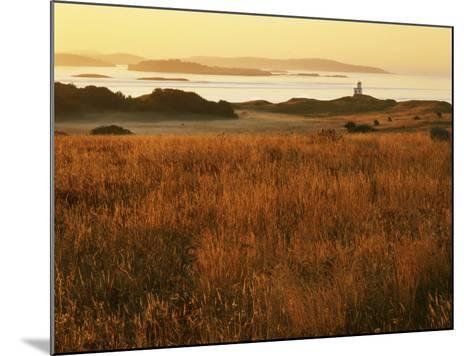 Cattle Point Lighthouse, San Juan Island National Historical Park, Washington, USA-Charles Gurche-Mounted Photographic Print