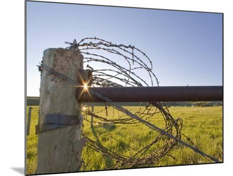 Barbed Wire Rolled Up, Lewistown, Montana-Chuck Haney-Mounted Photographic Print