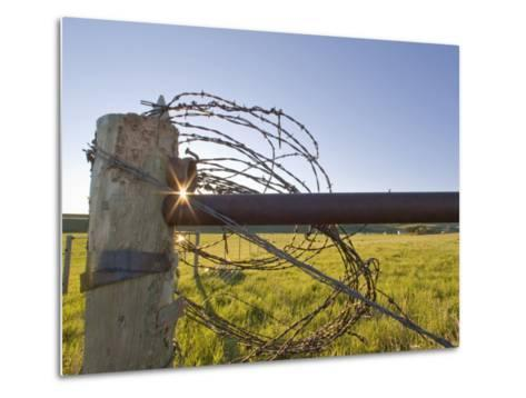 Barbed Wire Rolled Up, Lewistown, Montana-Chuck Haney-Metal Print