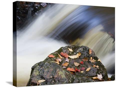 Overlooked Falls, Porcupine Mountains Wilderness State Park, Michigan, USA-Chuck Haney-Stretched Canvas Print