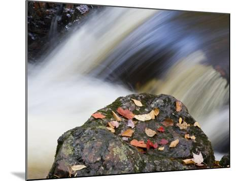 Overlooked Falls, Porcupine Mountains Wilderness State Park, Michigan, USA-Chuck Haney-Mounted Photographic Print
