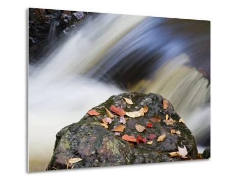 Overlooked Falls, Porcupine Mountains Wilderness State Park, Michigan, USA-Chuck Haney-Metal Print