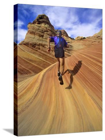 Trail Runner on Sandstone, Coyote Buttes, Utah, USA-Chuck Haney-Stretched Canvas Print