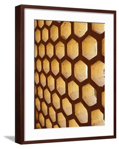 Architectural details, Amber Fort, Jaipur, India-Adam Jones-Framed Art Print