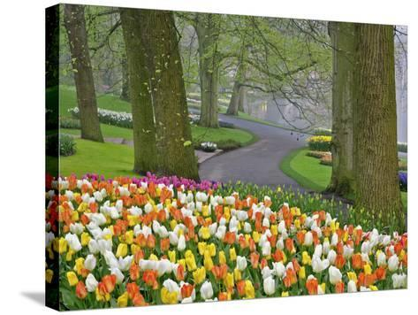 Tulips and Roadway, Keukenhof Gardens, Lisse, Netherlands-Adam Jones-Stretched Canvas Print