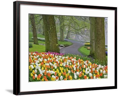 Tulips and Roadway, Keukenhof Gardens, Lisse, Netherlands-Adam Jones-Framed Art Print