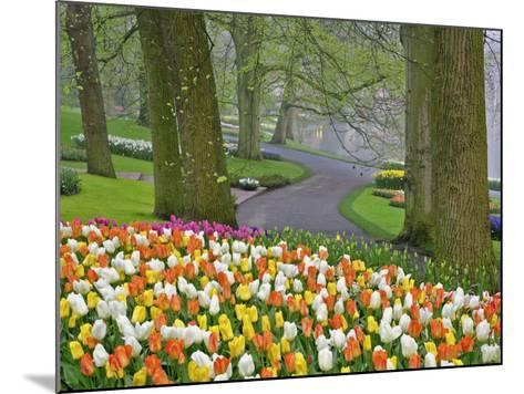Tulips and Roadway, Keukenhof Gardens, Lisse, Netherlands-Adam Jones-Mounted Photographic Print