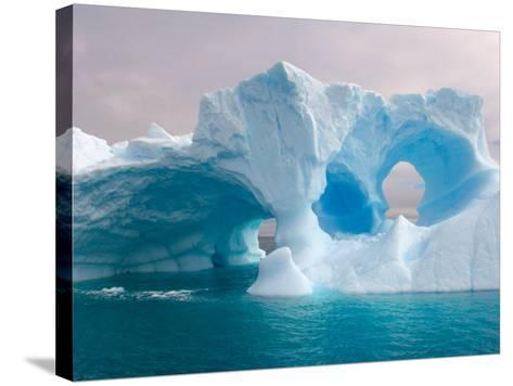 Arched Iceberg, Western Antarctic Peninsula, Antarctica-Steve Kazlowski-Stretched Canvas Print