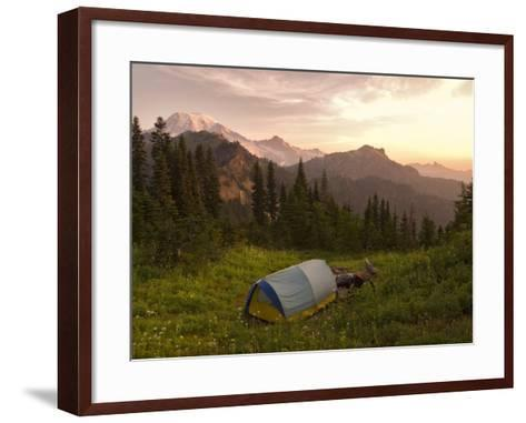 Blue backpacking tent in the Tatoosh Wilderness, Washington State, USA-Janis Miglavs-Framed Art Print