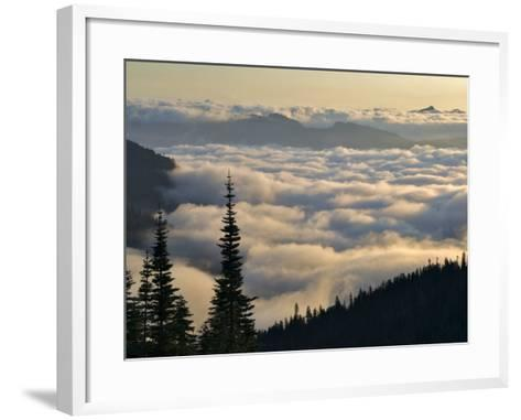 Cowlitz River Valley, Tatoosh Wilderness, Washington Cascades, USA-Janis Miglavs-Framed Art Print