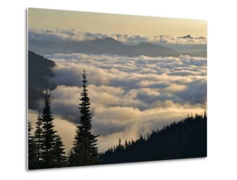 Cowlitz River Valley, Tatoosh Wilderness, Washington Cascades, USA-Janis Miglavs-Metal Print