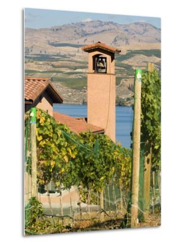 Mountains and Lake Chelan, Columbia Valley Appellation, Washington, USA-Janis Miglavs-Metal Print