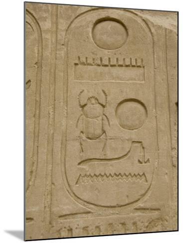Hieroglyphics detail, Karnak Temple, East Bank, Luxor, Egypt-Cindy Miller Hopkins-Mounted Photographic Print