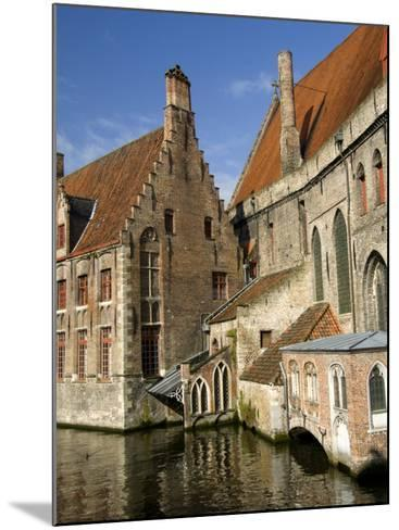 Historic Brugge, Belgium-Cindy Miller Hopkins-Mounted Photographic Print