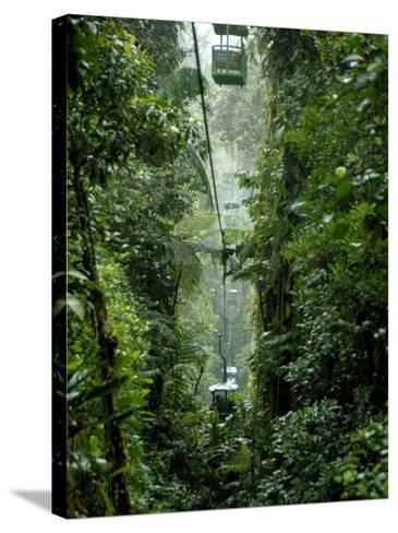 Rain Forest Tram, Braulio Carrillo National Park, Sarapiqui, Costa Rica-Cindy Miller Hopkins-Stretched Canvas Print