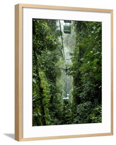 Rain Forest Tram, Braulio Carrillo National Park, Sarapiqui, Costa Rica-Cindy Miller Hopkins-Framed Art Print
