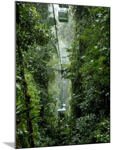 Rain Forest Tram, Braulio Carrillo National Park, Sarapiqui, Costa Rica-Cindy Miller Hopkins-Mounted Photographic Print