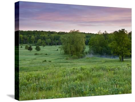 Early morning in a field at Highland Farm in York, Maine, USA-Jerry & Marcy Monkman-Stretched Canvas Print