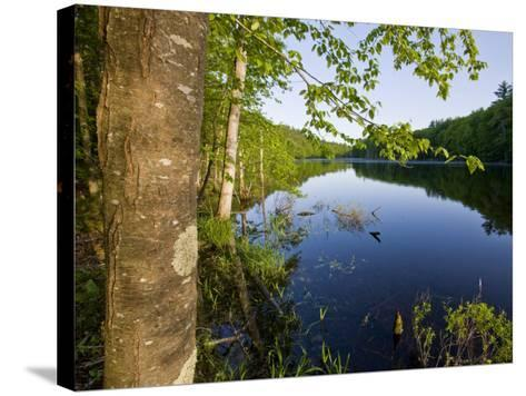 Boulter Pond at Highland Farm, York, Maine-Jerry & Marcy Monkman-Stretched Canvas Print