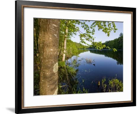 Boulter Pond at Highland Farm, York, Maine-Jerry & Marcy Monkman-Framed Art Print