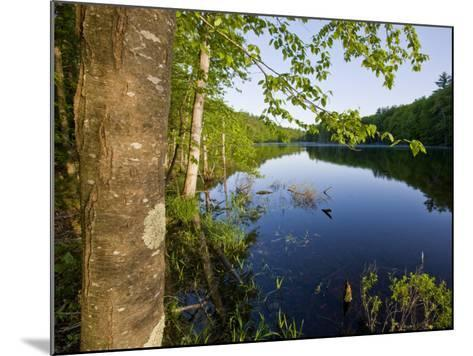 Boulter Pond at Highland Farm, York, Maine-Jerry & Marcy Monkman-Mounted Photographic Print