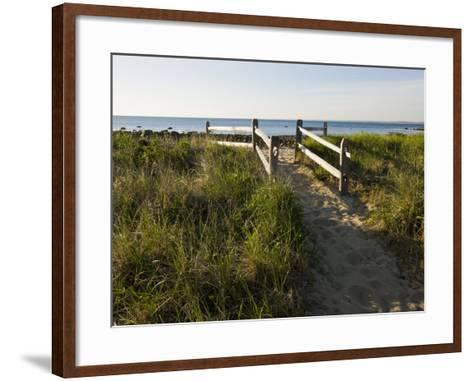 Beach Path at the Center Hill Preserve, Plymouth, Massachusetts, USA-Jerry & Marcy Monkman-Framed Art Print