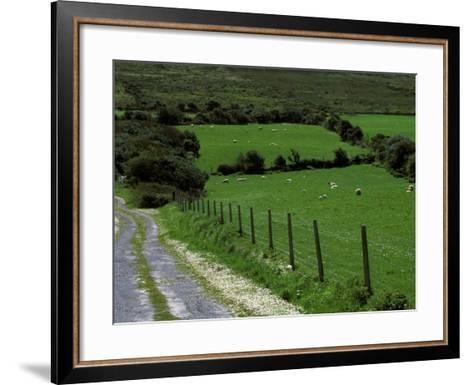 Scenic Dirt Road with Wildflowers, County Cork, Ireland-Marilyn Parver-Framed Art Print