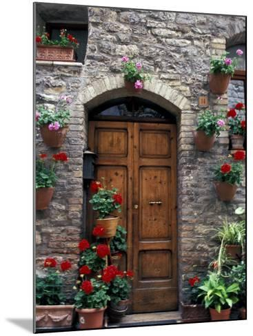 Flower Pots on Door, Assisi, Umbria, Italy-Marilyn Parver-Mounted Photographic Print